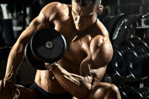 Bulk cycle steroid